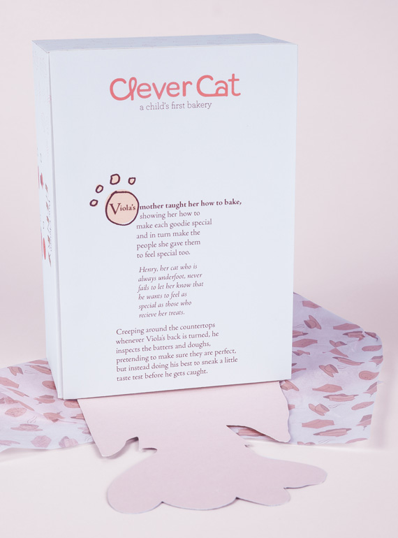 Clever-Cat-Box-Detail