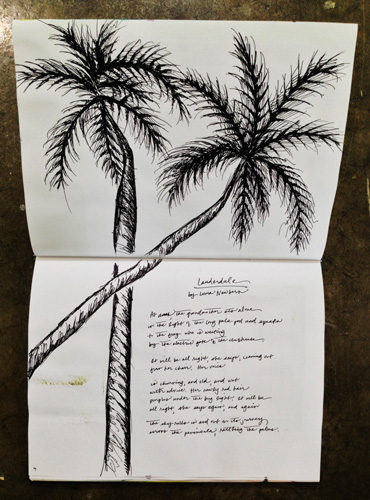 Sketchbook-Palm-Trees